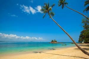 strand-met-blauwe-lucht-en-palmbomen