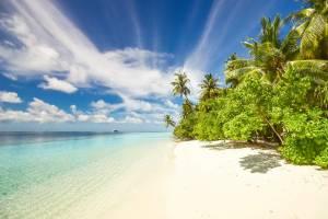 tropisch-eiland